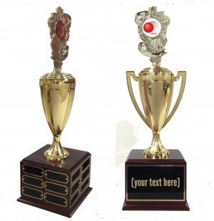 Kickball Traveling Trophy