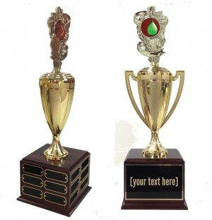 Water Balloon Traveling Trophy
