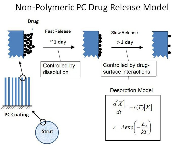 non polymeric PC drug release model