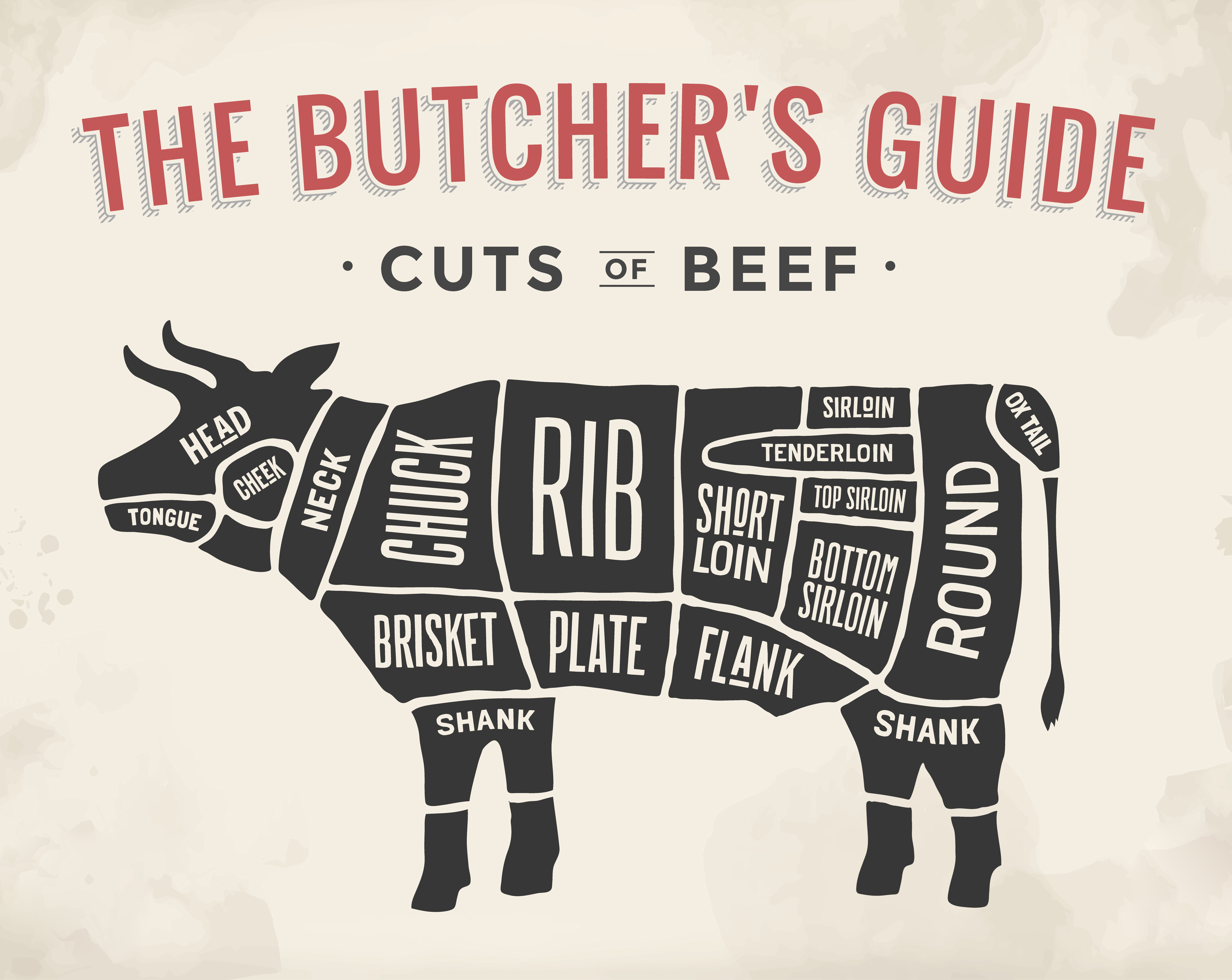A Guide To Cuts of Beef