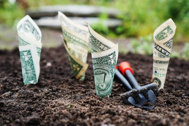 7 Ways to Save Money By Going Green!