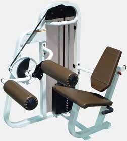 Body Masters XB 915 Leg Curl - Remanufactured