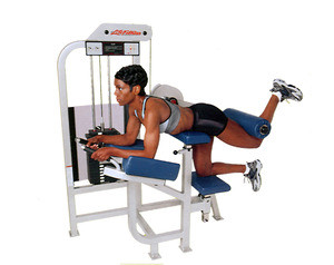 Life Fitness PRO Glute - Remanufactured