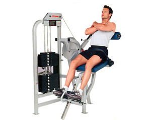 Life Fitness PRO Low Back Extension - Remanufactured