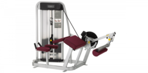 Cybex Eagle Prone Leg Curl - Remanufactured