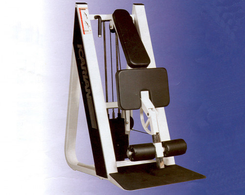 Icarian Standing Leg Curl - Remanufactured