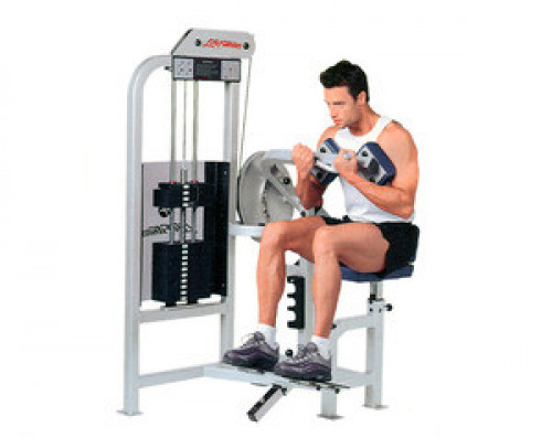 Life Fitness PRO Abdominal - Remanufactured