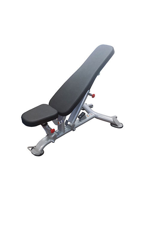 Muscle D Bench - New
