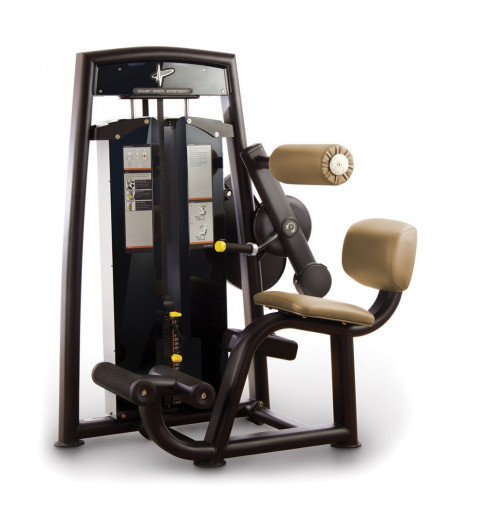 NEW! PULSE FITNESS Evolve Lower Back Extension CALL US FOR SPECIAL PRICING