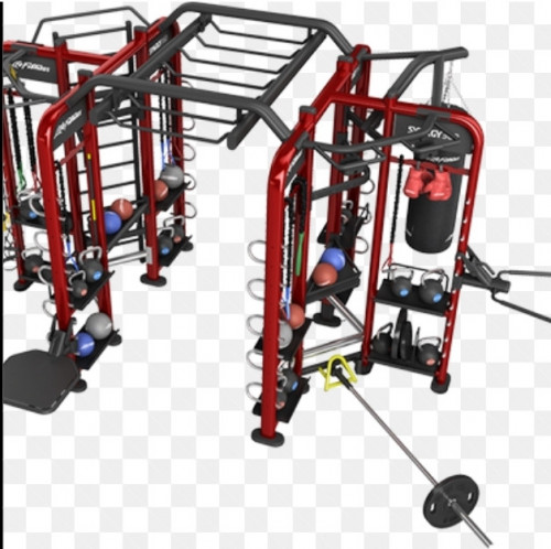 Life Fitness Synergy 360- Serviced