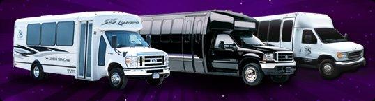 22 Passenger Buses