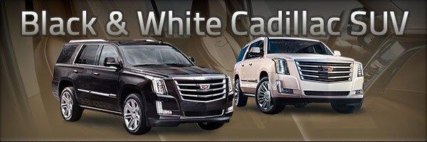 Black & White Cadillac SUV