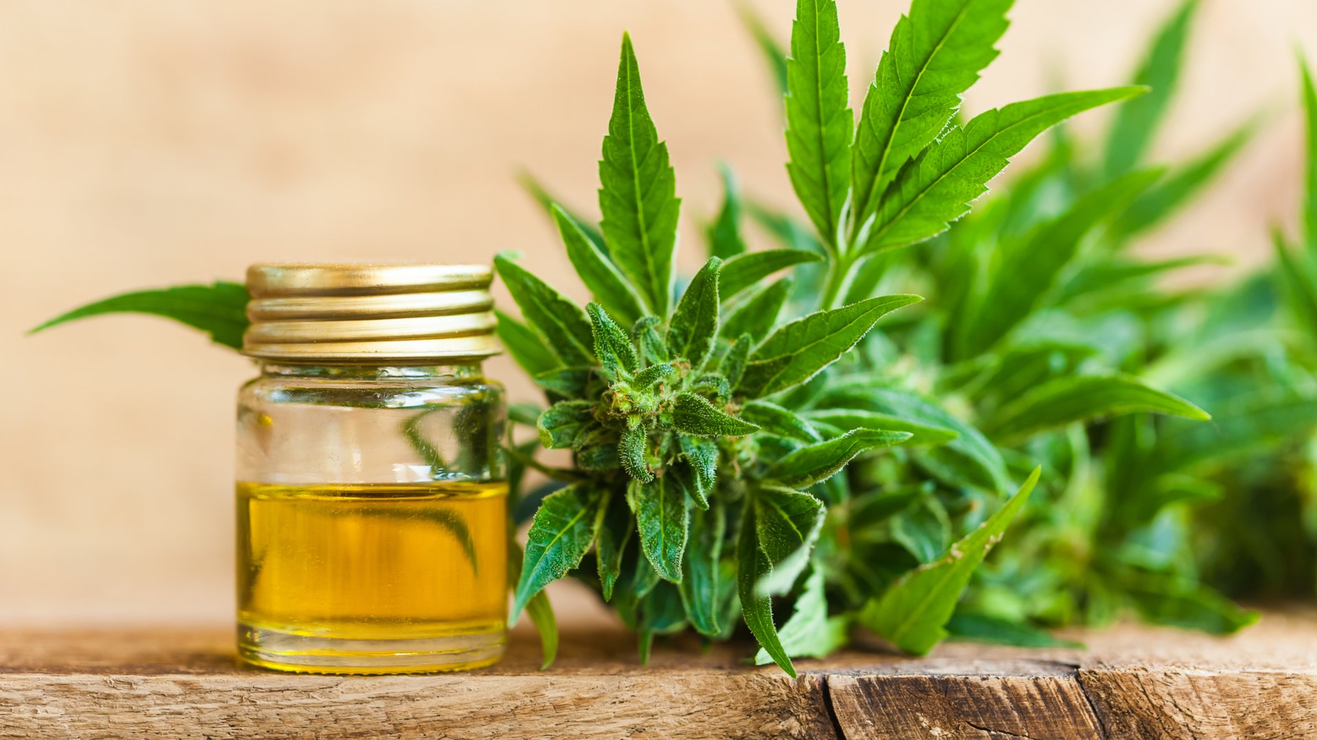 CBD skincare is quickly becoming a multibillion-dollar industry.