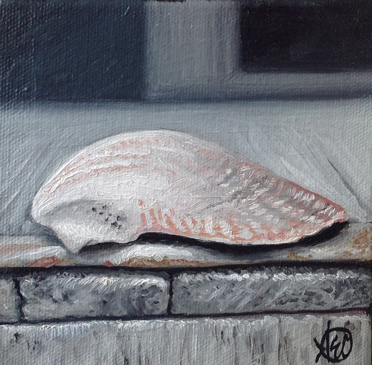 """""""Shell"""" - SOLD"""