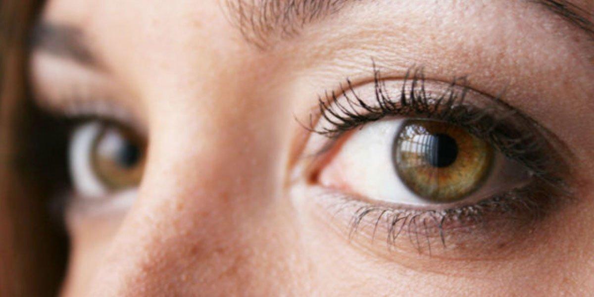 12 Retina Facts