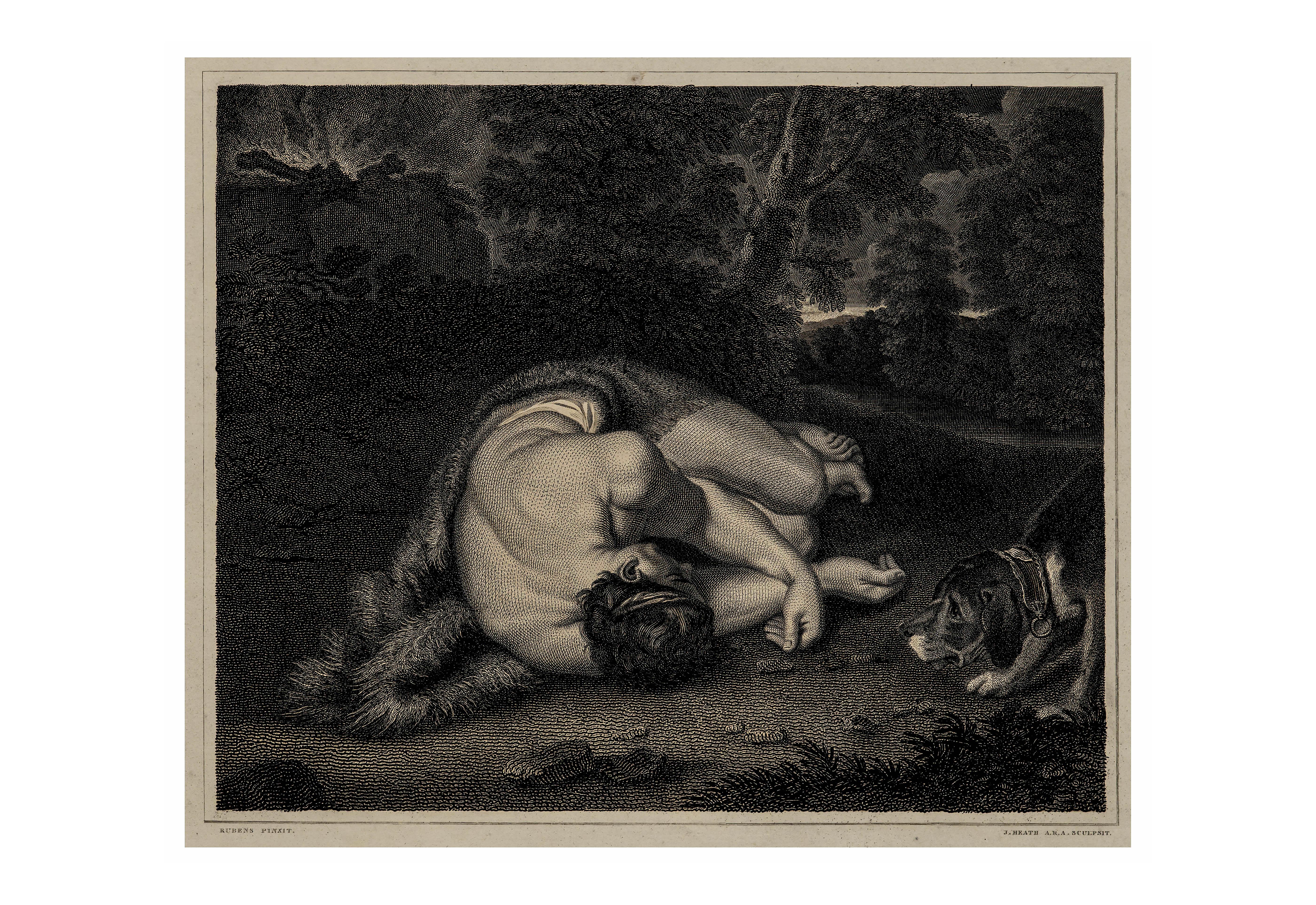 19th century antique wall art print Rubens Abel 1