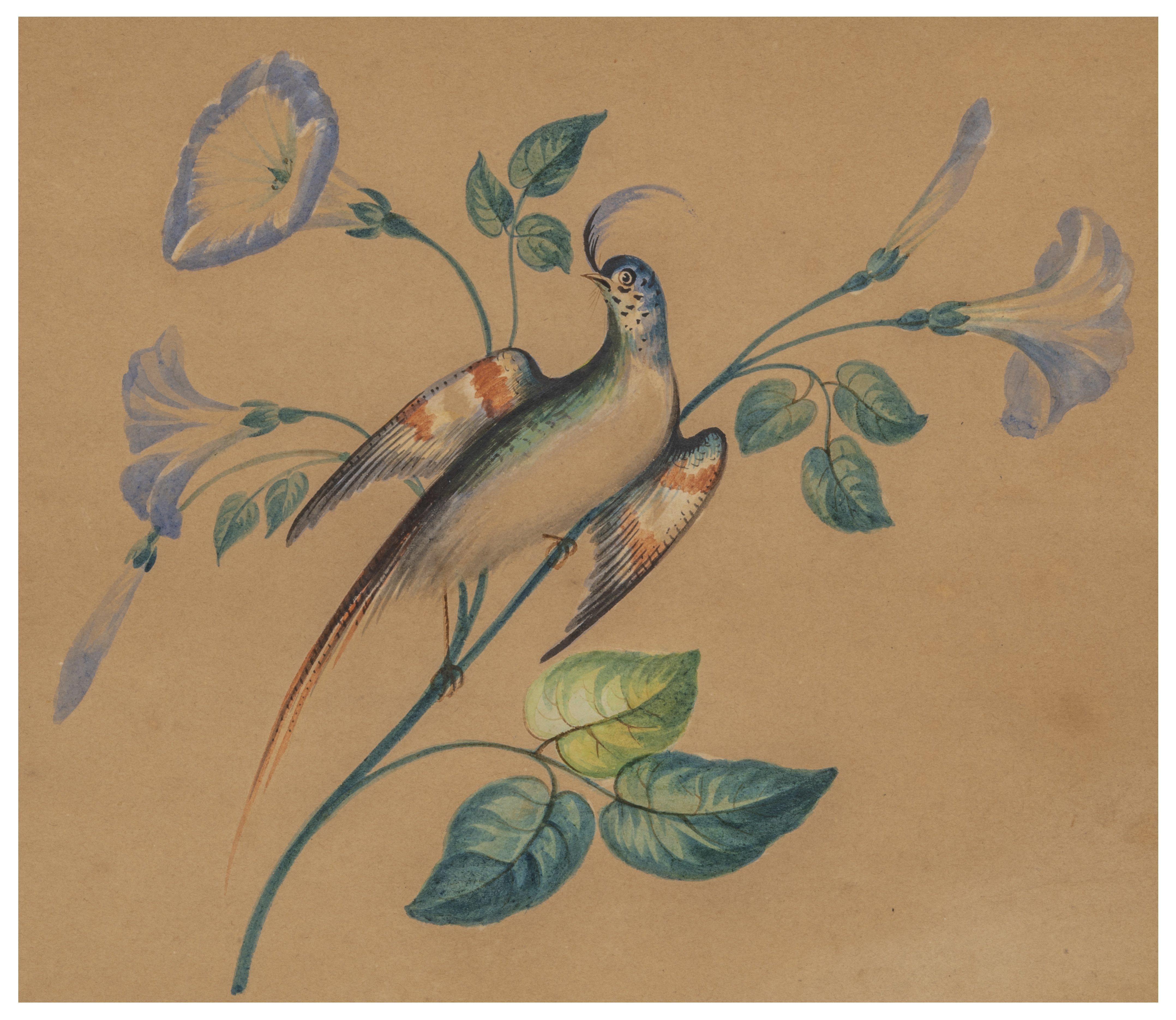 An Antique American Folk Art Watercolor Painting Bird & Flowers