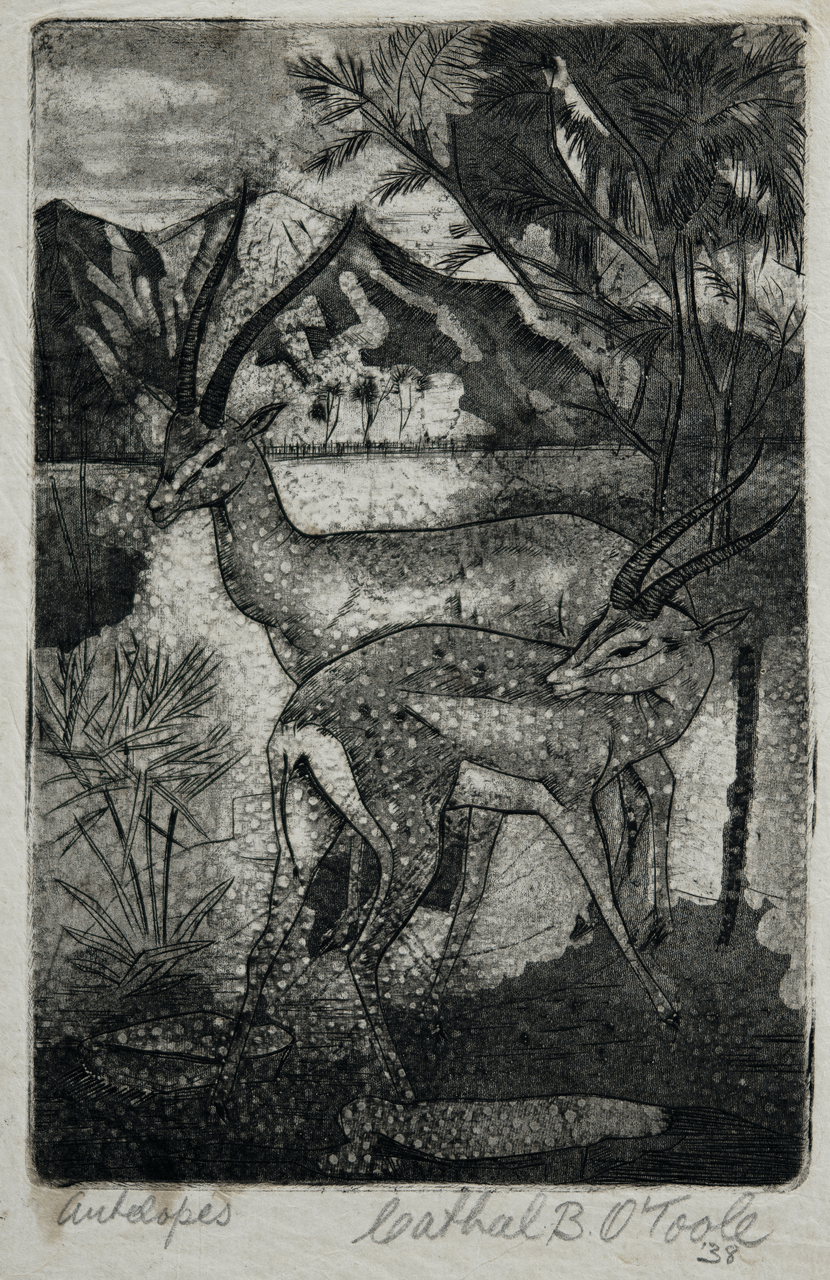Antelopes Original Engraving By Cathal O'Toole Dated 1938