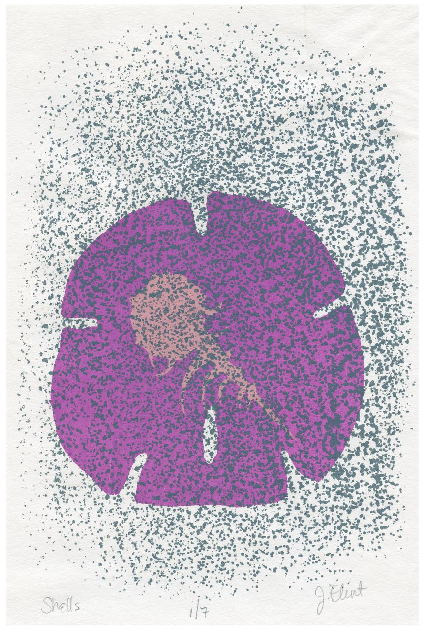 "A Vintage Lithograph Print ""Shells"" Signed J. Flint"