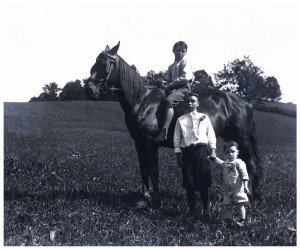 An Antique Glass Plate Negative Photograph Three Brothers On Horseback