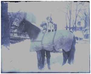 An Antique Glass Plate Negative Photograph Dog On Horse In Snow