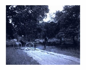 An Antique Glass Plate Negative Photograph Man In Horse Carriage On Dirt Road