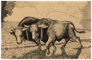 An Early 1920's-1930's WPA American Regionalist Ink Drawing Of Oxen