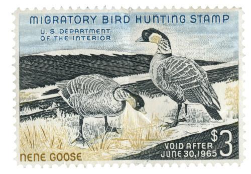 A Vintage US (Scott RW31) 1964 Nene Goose $3 Migratory Bird Hunting Stamp