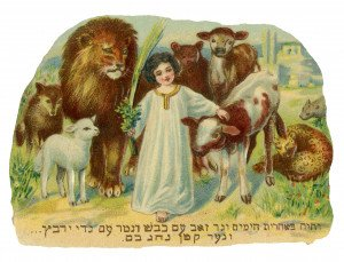 An Antique Collectable Judaica Ephemera Child With Animals