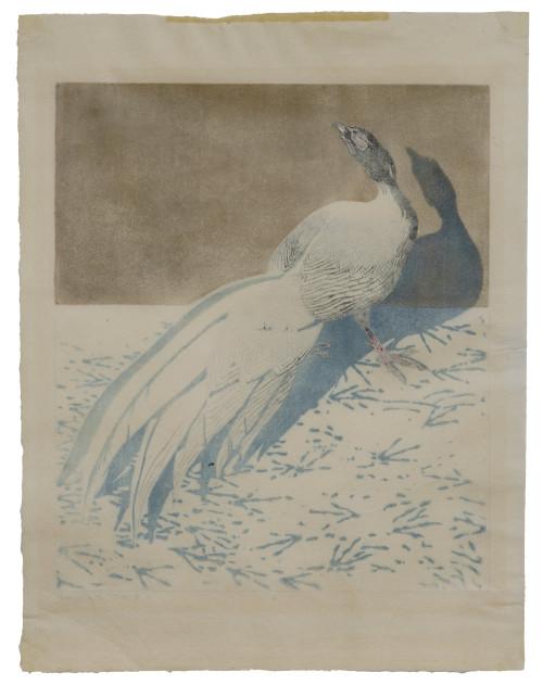 An Antique German Color Block Print Signed Hans Frank (1884-1948) Of A Pheasant