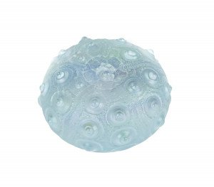 A Contemporary Signed Favrile Style Studio Glass Sea Form Paper Weight ROL 2010