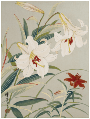 An Antique Signed Japanese Painting of Florals and Botanicals
