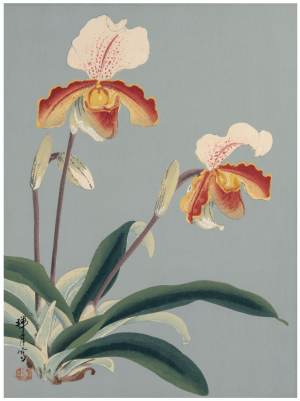An Antique Signed Japanese Floral Painting