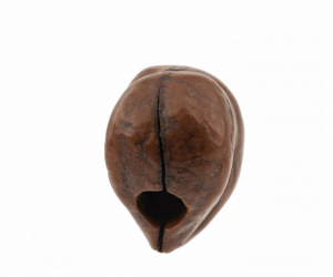 A 19th Century Japanese Wooden Carved Chestnut Form Ojime Bead